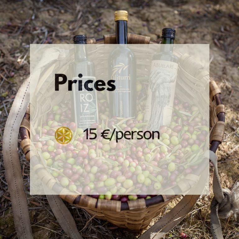Prices oliva oil turism ERROIZ